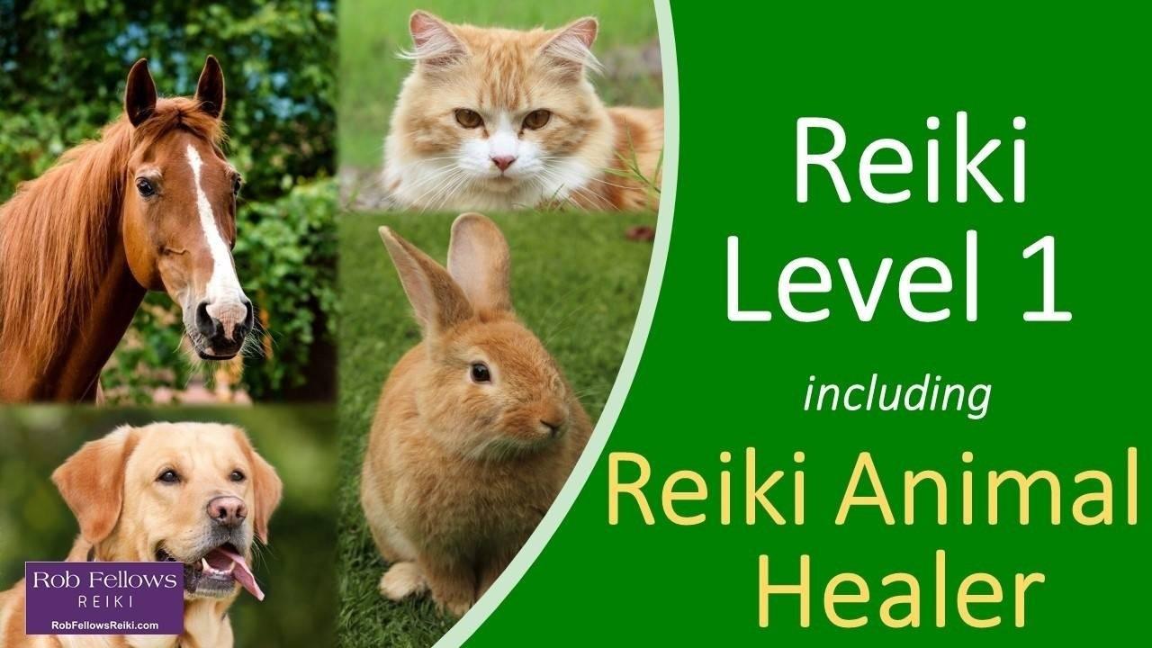 Ftuy9sawq4sjxuv8tzci lx1zacpiquwoshvoothz animal reiki healer front cover