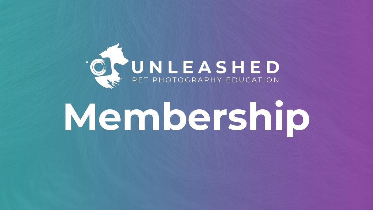 Ps6ysiqer1ofjtrngr6o unleashed membership