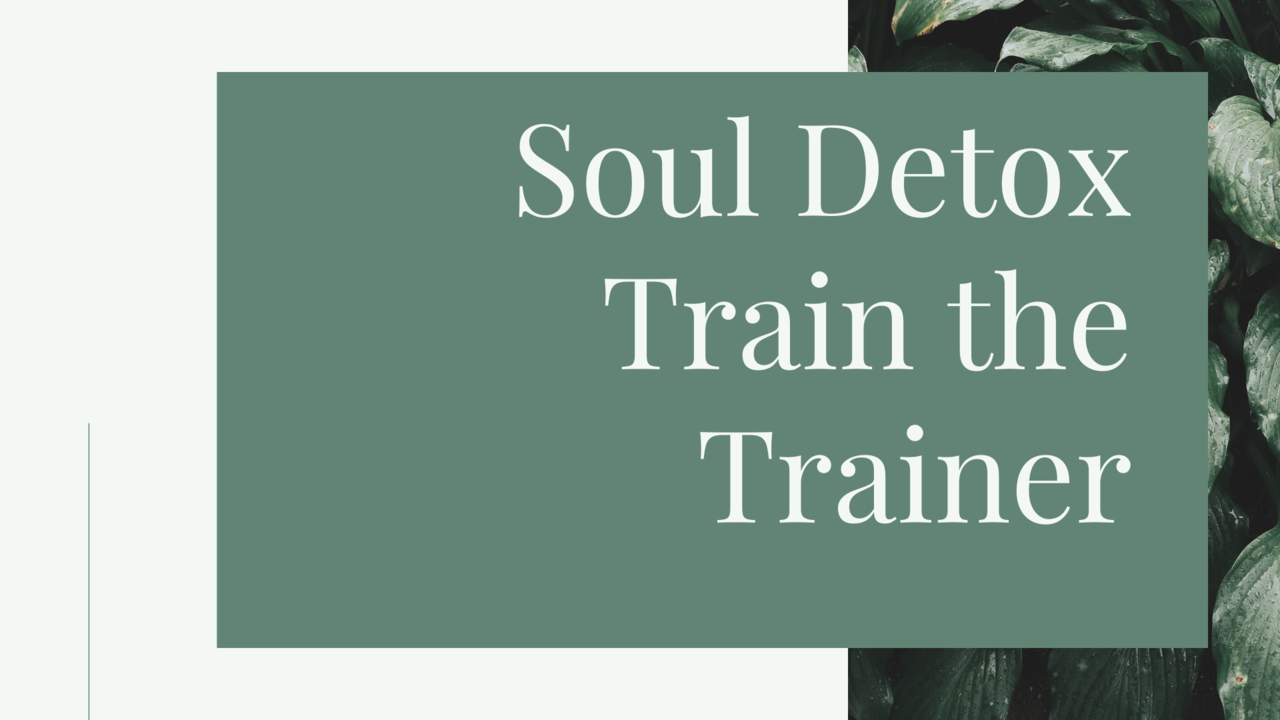 Nvoh7ndatrckantzdrdr soul detox train the trainer 1