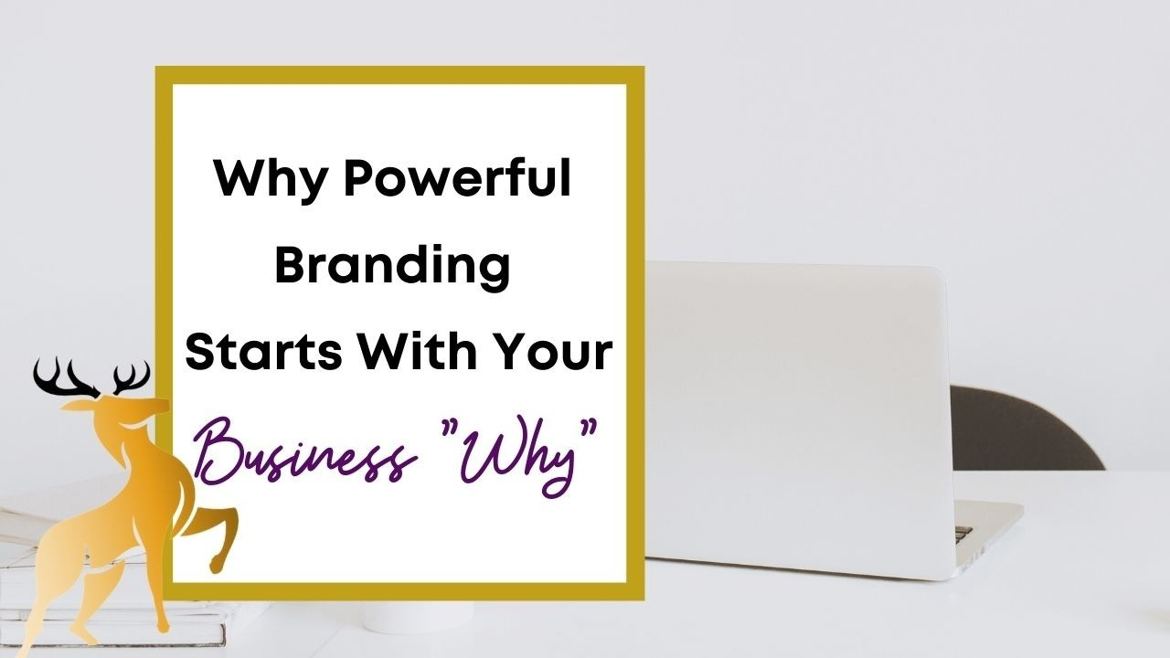 Image of the blog title, Why Powerful Branding Starts With Your Business