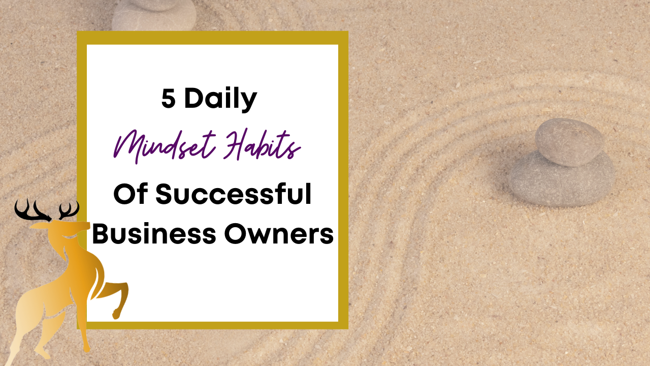 Image of the blog title, 5 Daily Mindset Habits of Successful Business Owners
