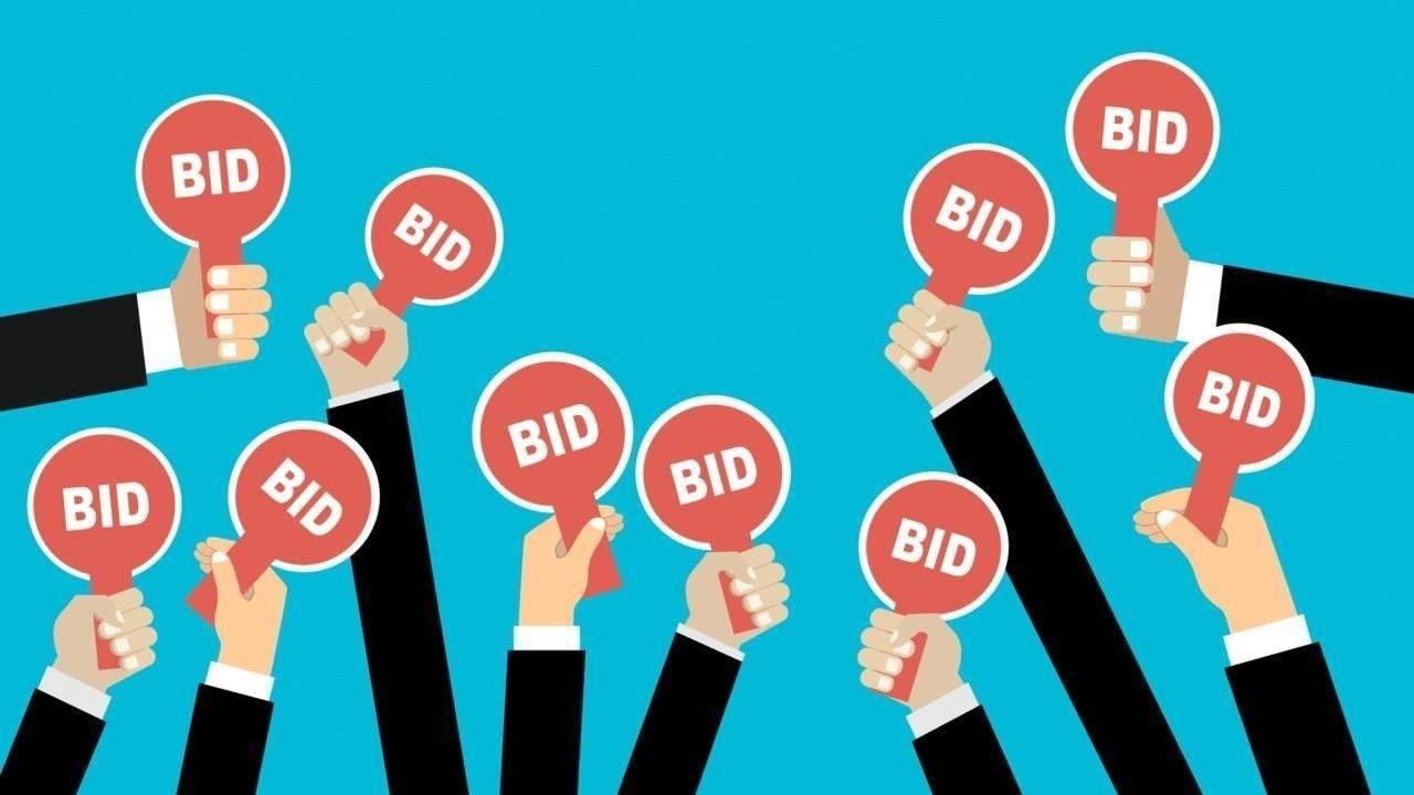 amazon bidding site