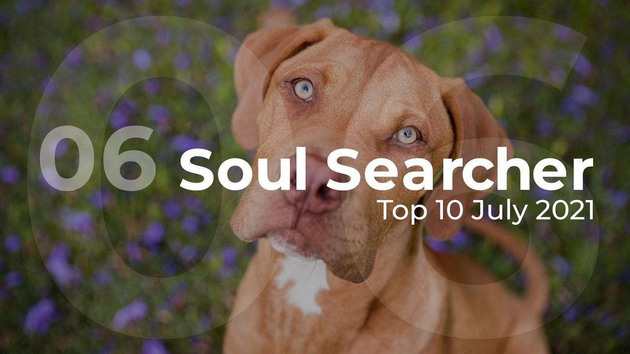 Soul Searcher Top 10