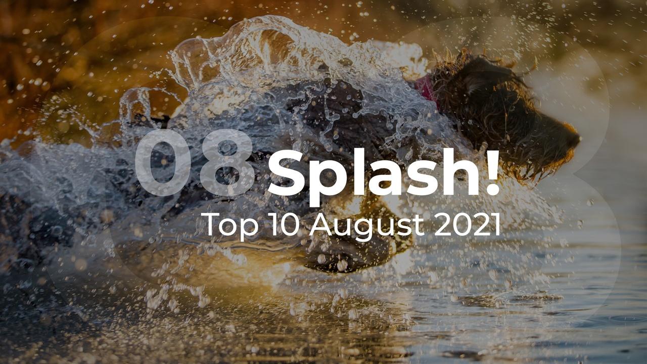 Splash! Top 10