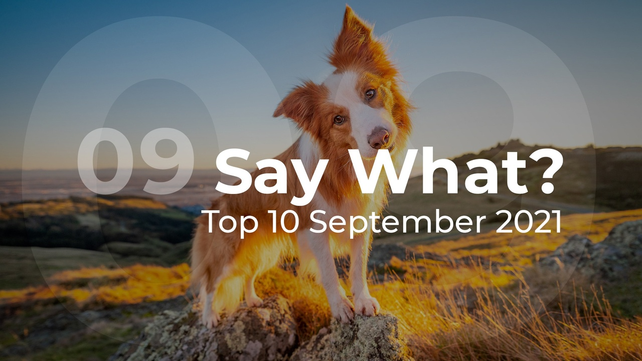 Say What? Top 10