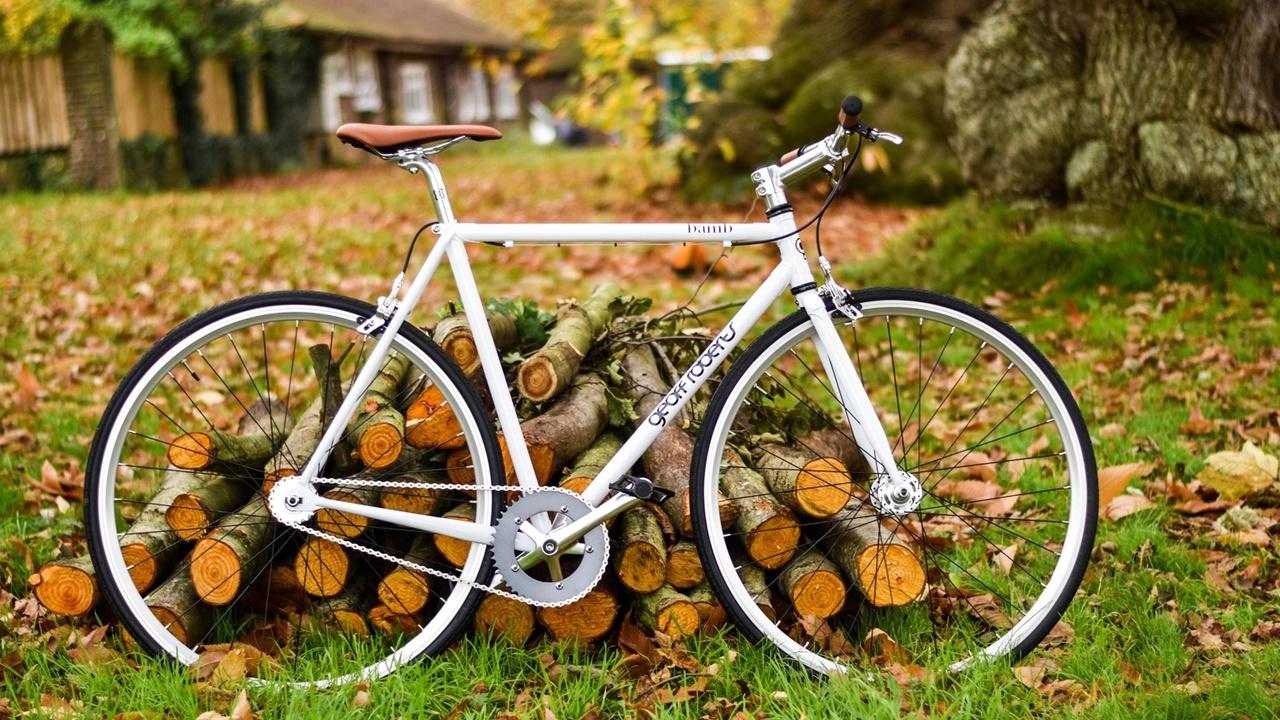 Riding our Bikes Through our Food Stories