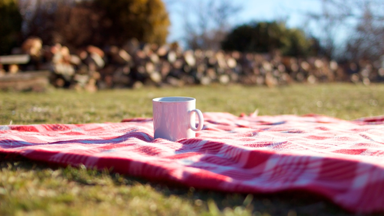 Lessons Learned on a Picnic Blanket in a Town of Twelve