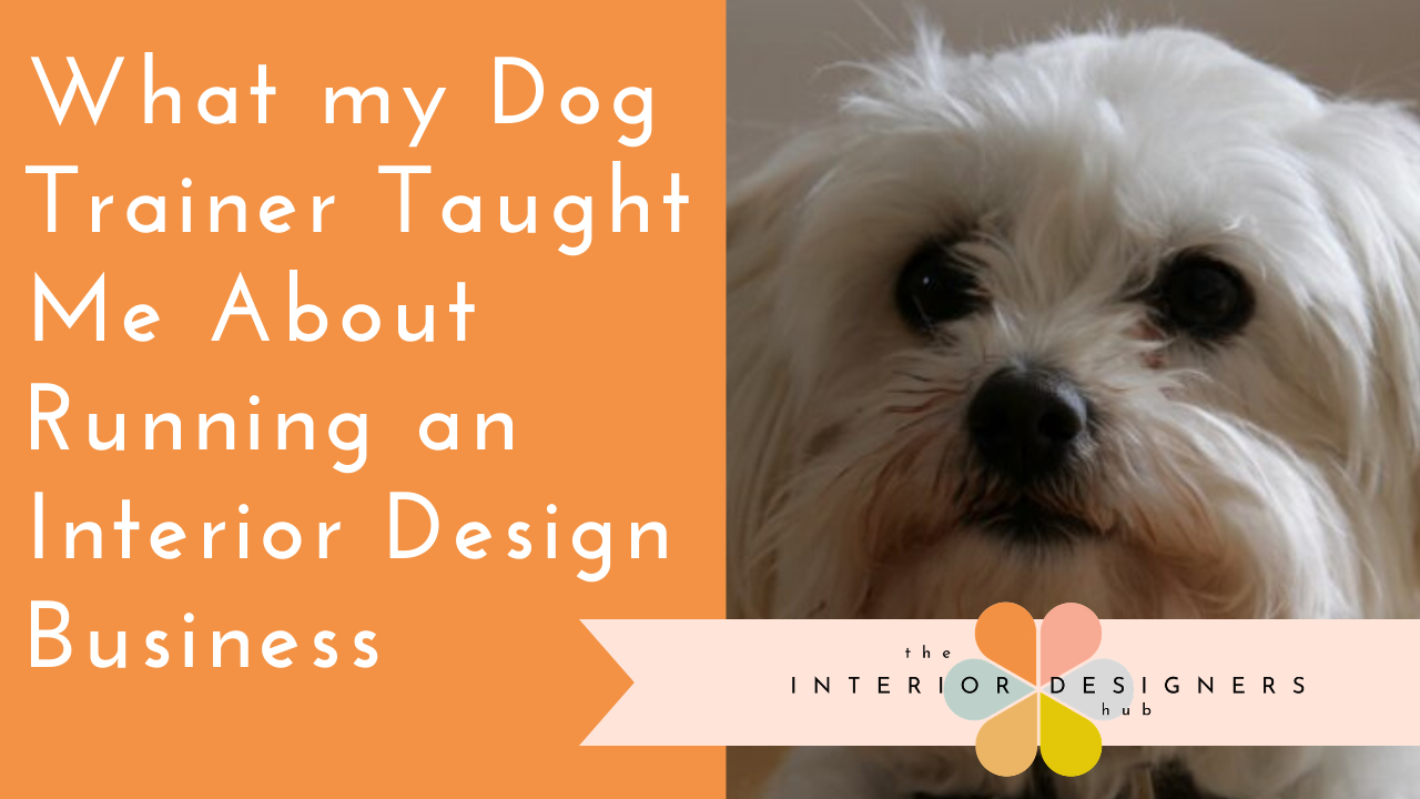 What my Dog Trainer Taught Me About Running an Interior Design Business