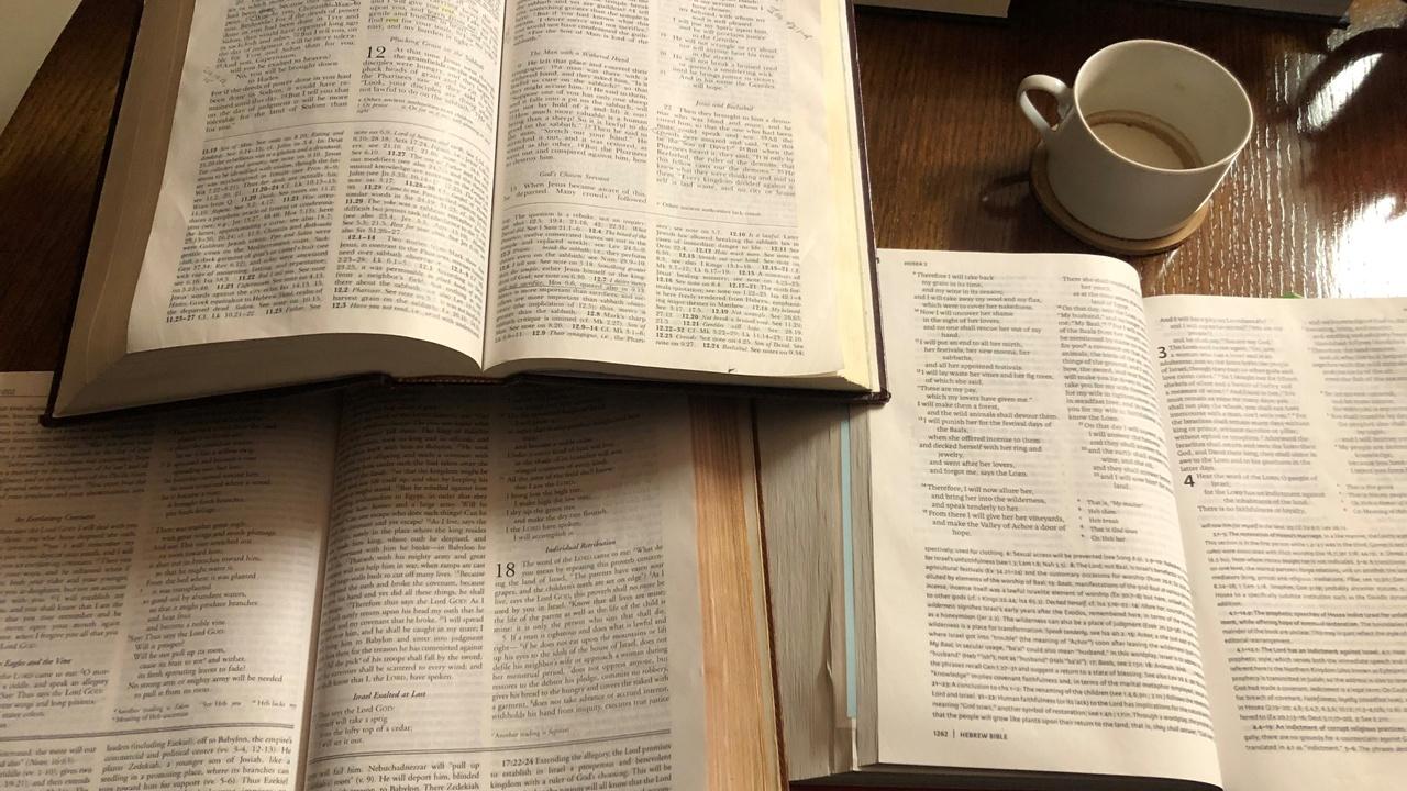 Aaca9yddreuqcrdqlply study bibles