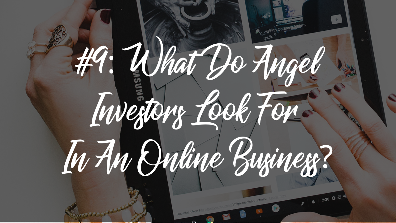Blog article 12 - what do angel investors look for in an online business?