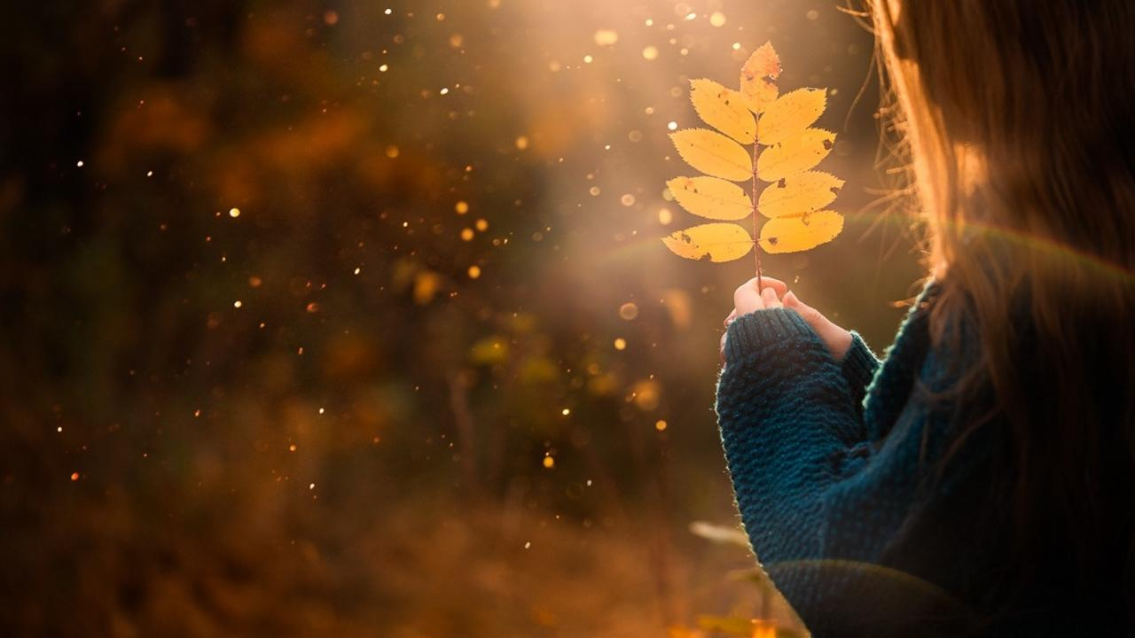 How to take stunning fall images of children