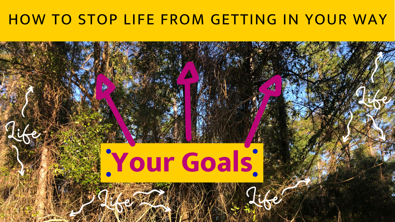 if trees are your goals, then these vines are your excuses