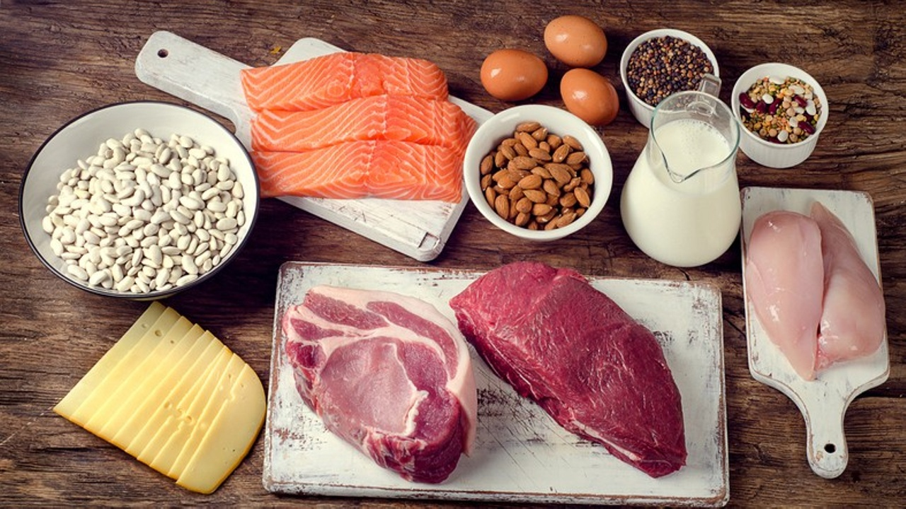 food sources rich in protein