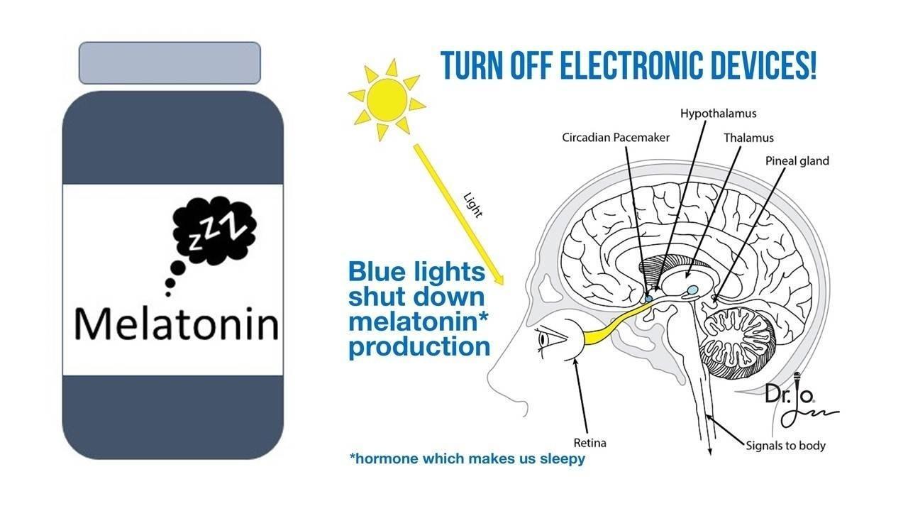 melatonin is not just in a bottle, it's produced in the brain