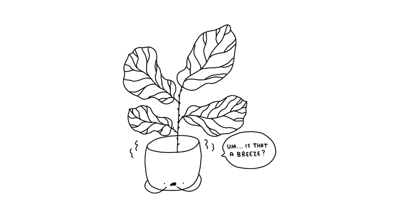 How to draw a fiddle leaf