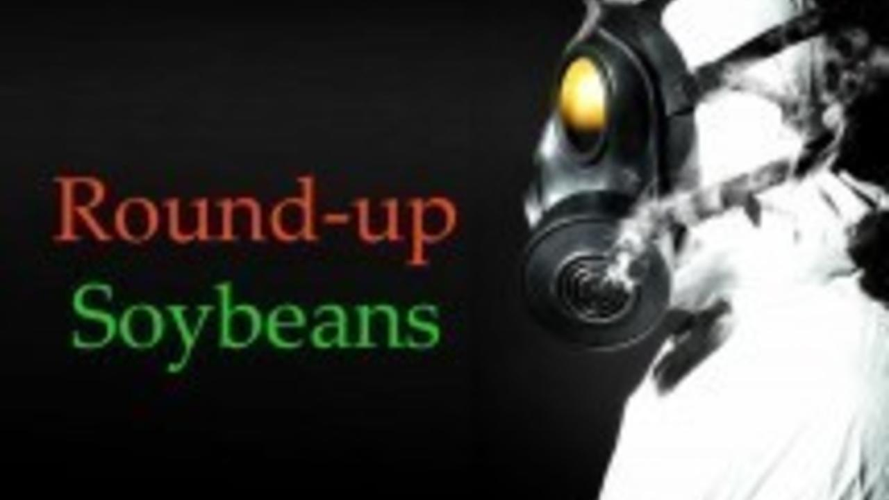 soybeans-roundup-causes-cancer