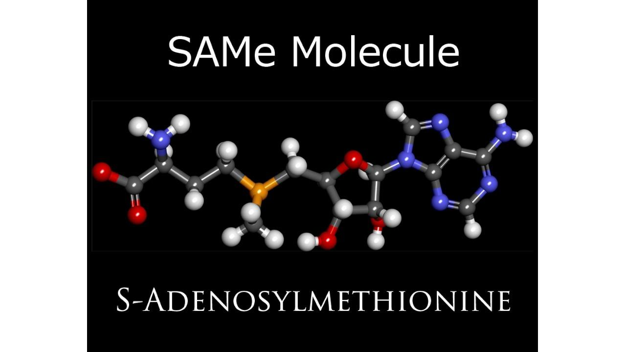SAMeMolecule