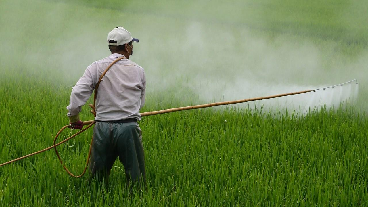 (Not a) Surprise: Glyphosate-Based Herbicides are Bad for Your Mental Health