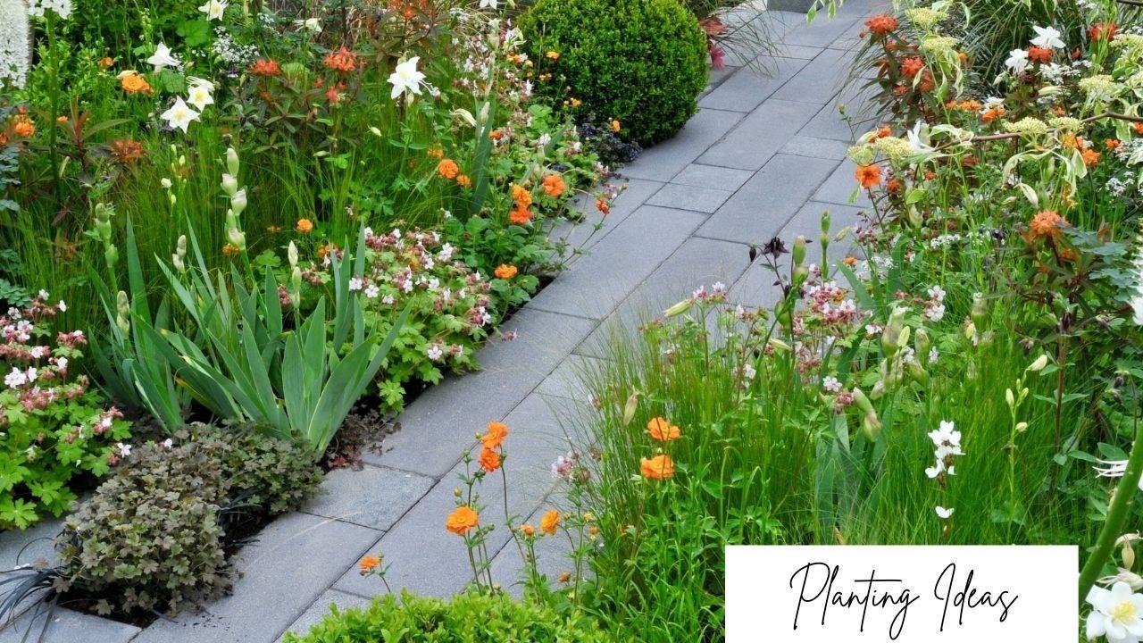 Planting ideas orange color