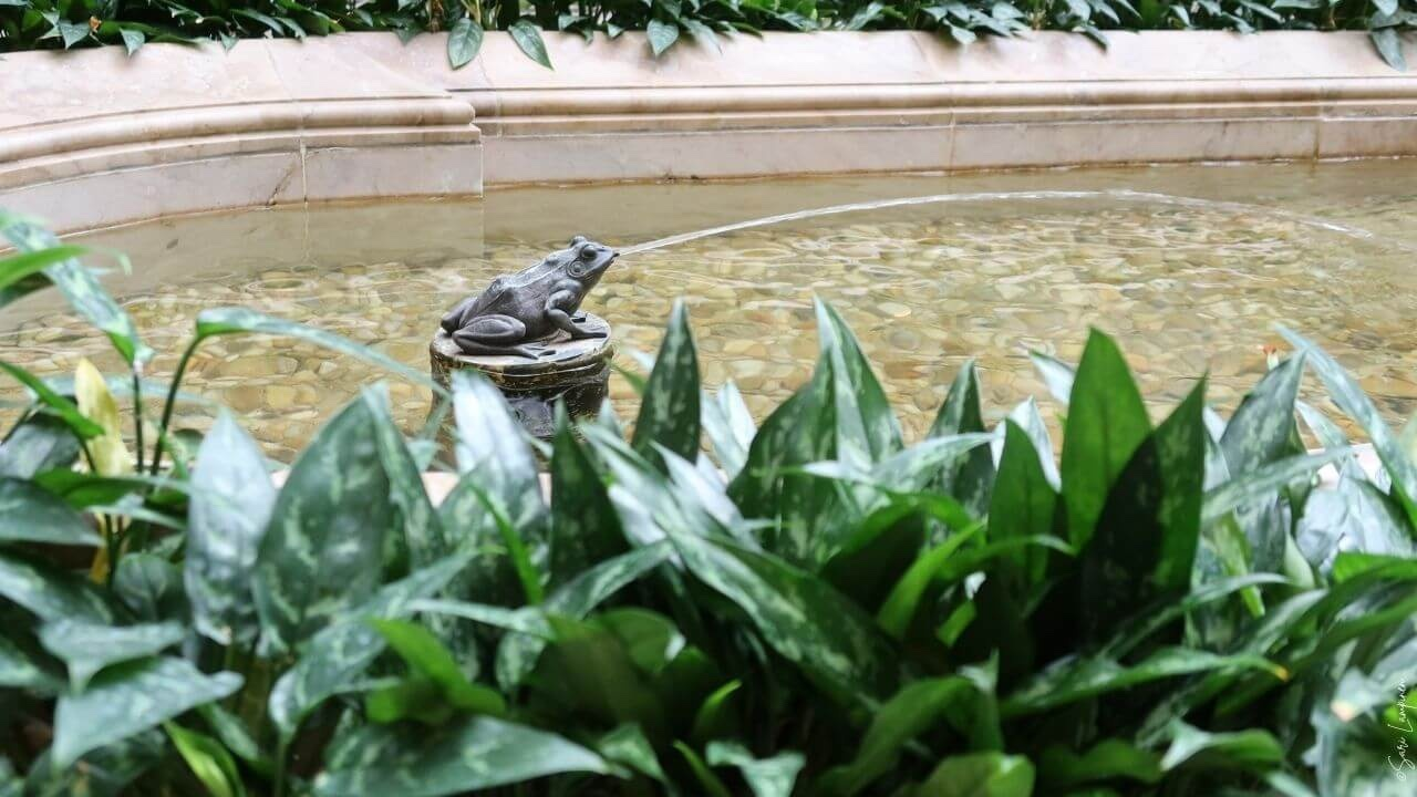 A frog as a joyful feature at The Frick Collection Museum - Garden Design Stories