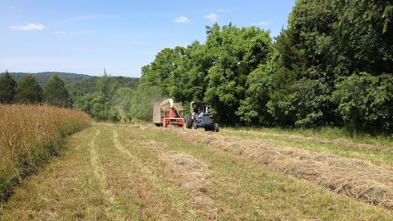 tractor and wagon in a sunny field