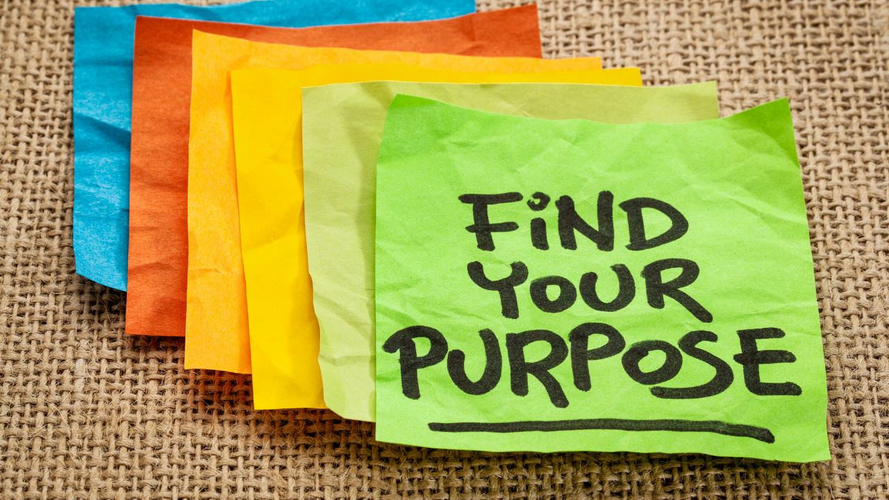 wie wichtig ist der Purpose?