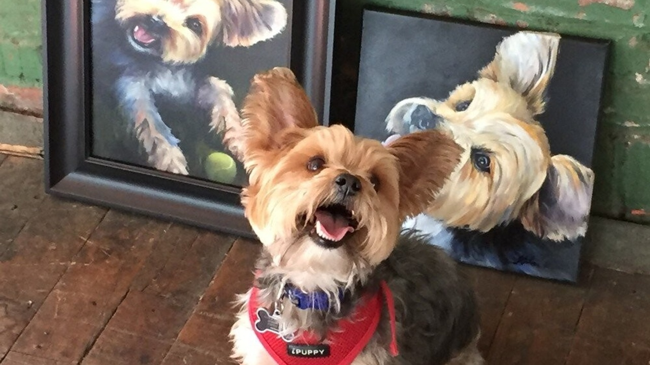 5 Reasons To Get A Custom Oil Pet Portrait