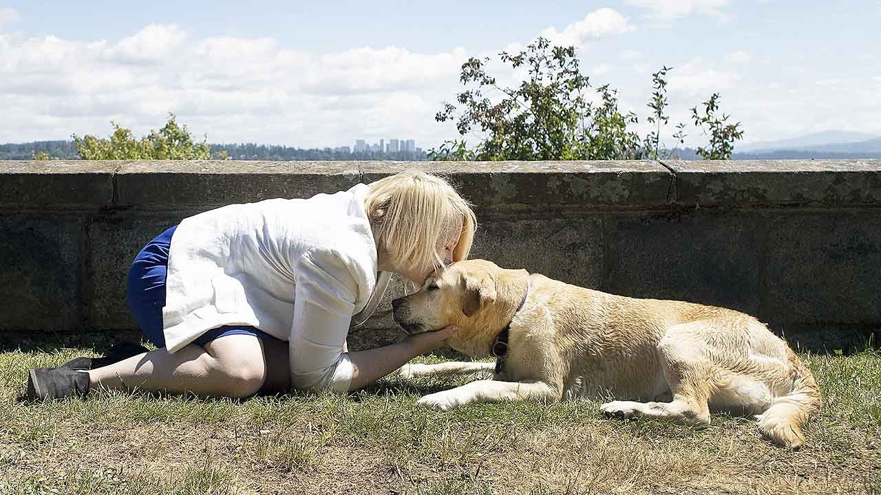 Animal Hospice Group - Continuing Bonds
