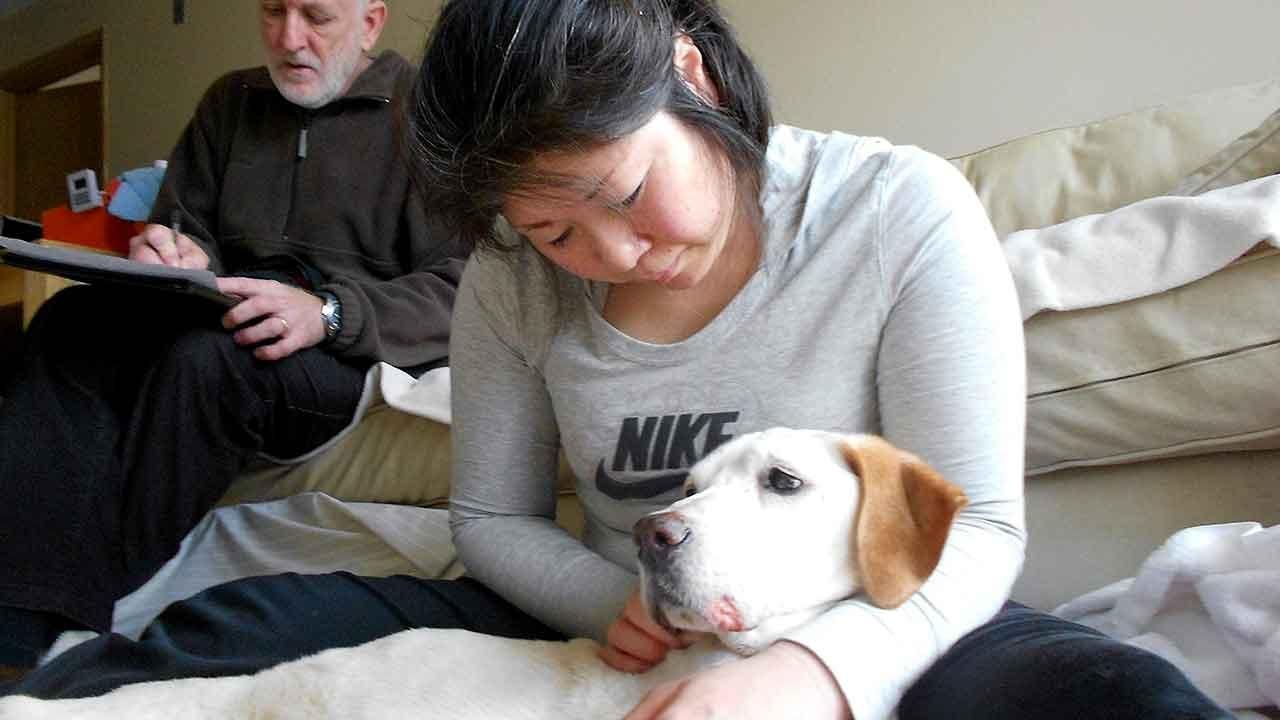 Animal Hospice Group - Yoshiko and Oji