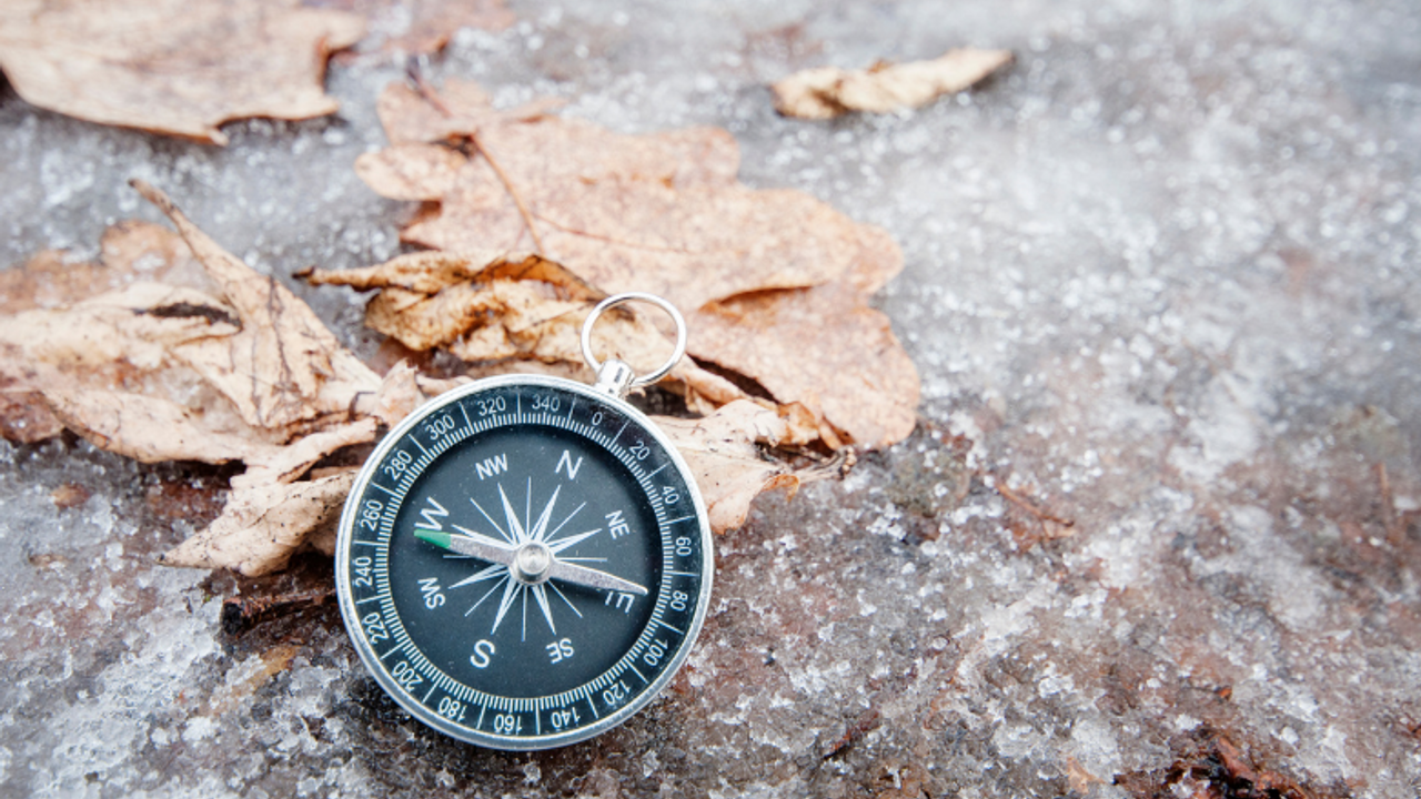 Compass indicating orientation