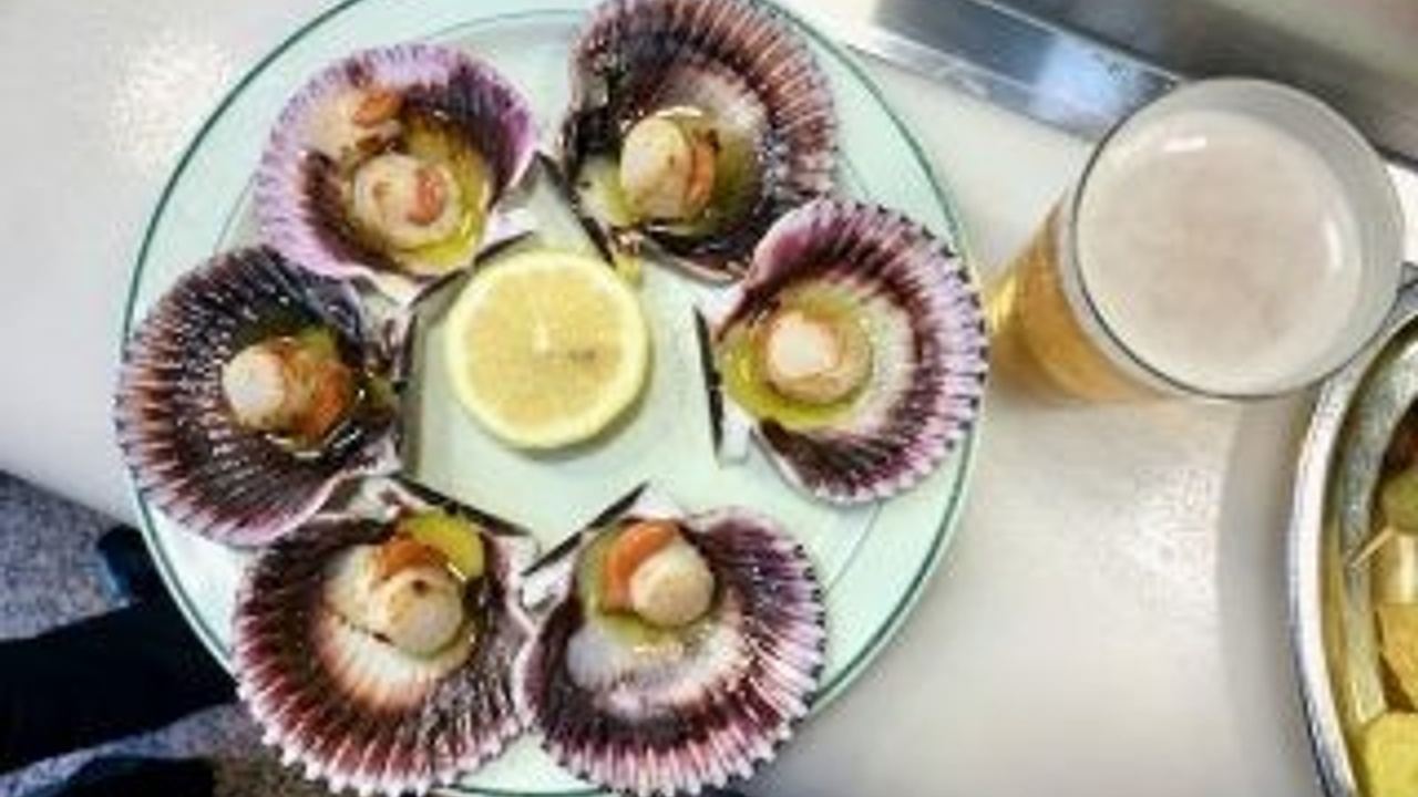 Galician style scallops