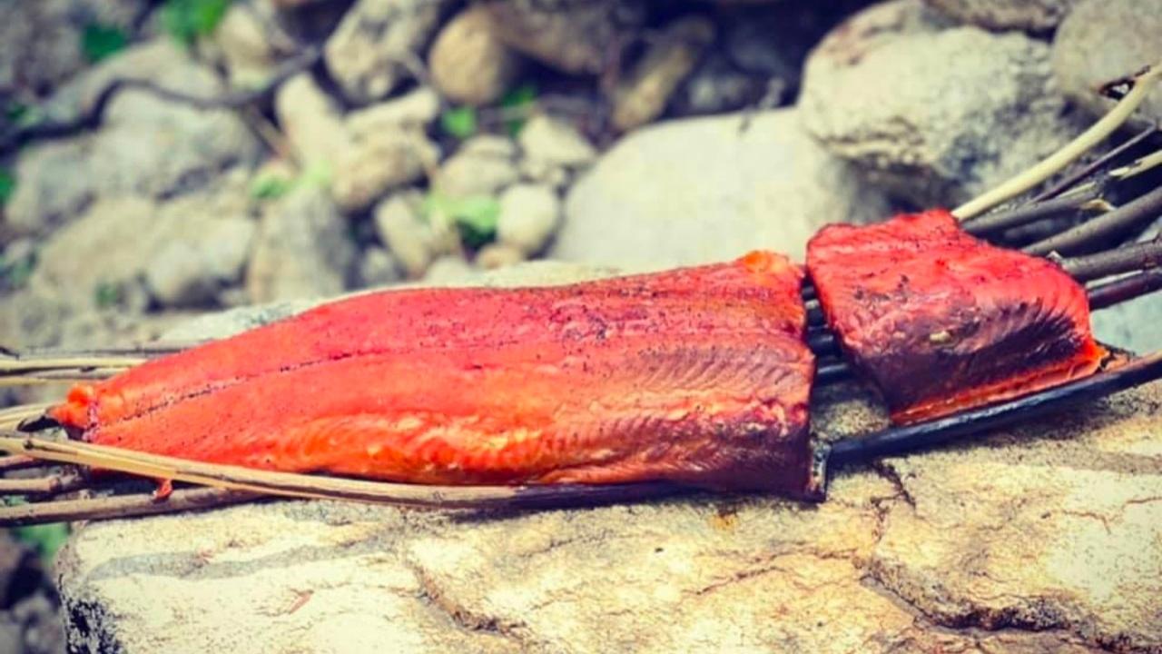 Fishing | Rewilding | Bushcraft | Salmon