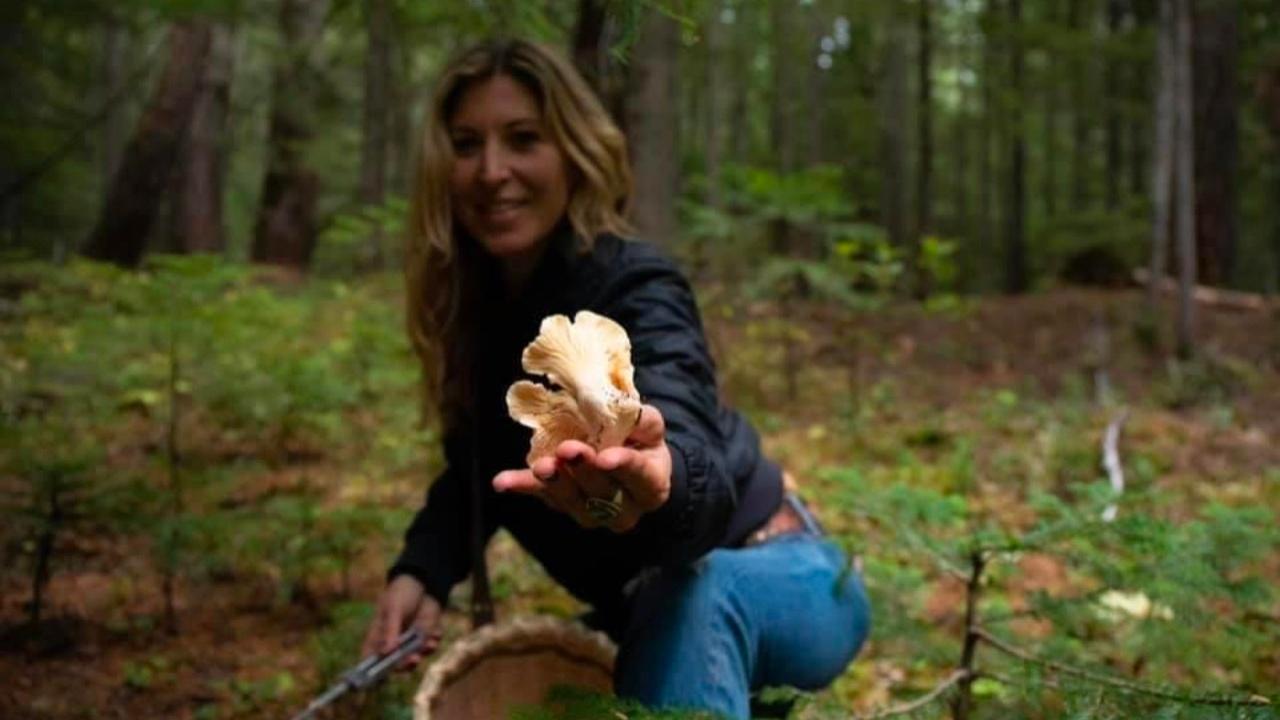 Wild Foraging | Plant medicine | Rewilding | Mushroom Forage