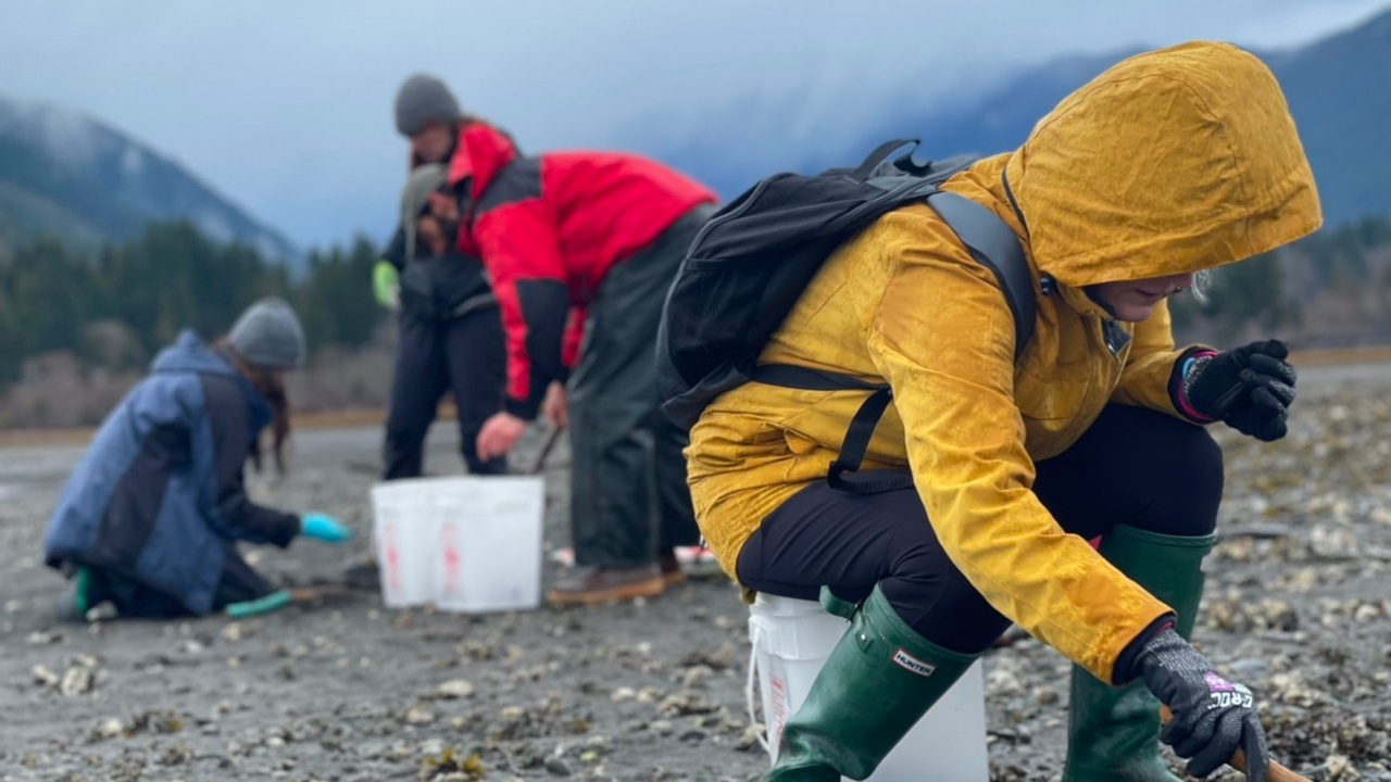 Foraging for Oysters and Hunting for Clams | Rewilding