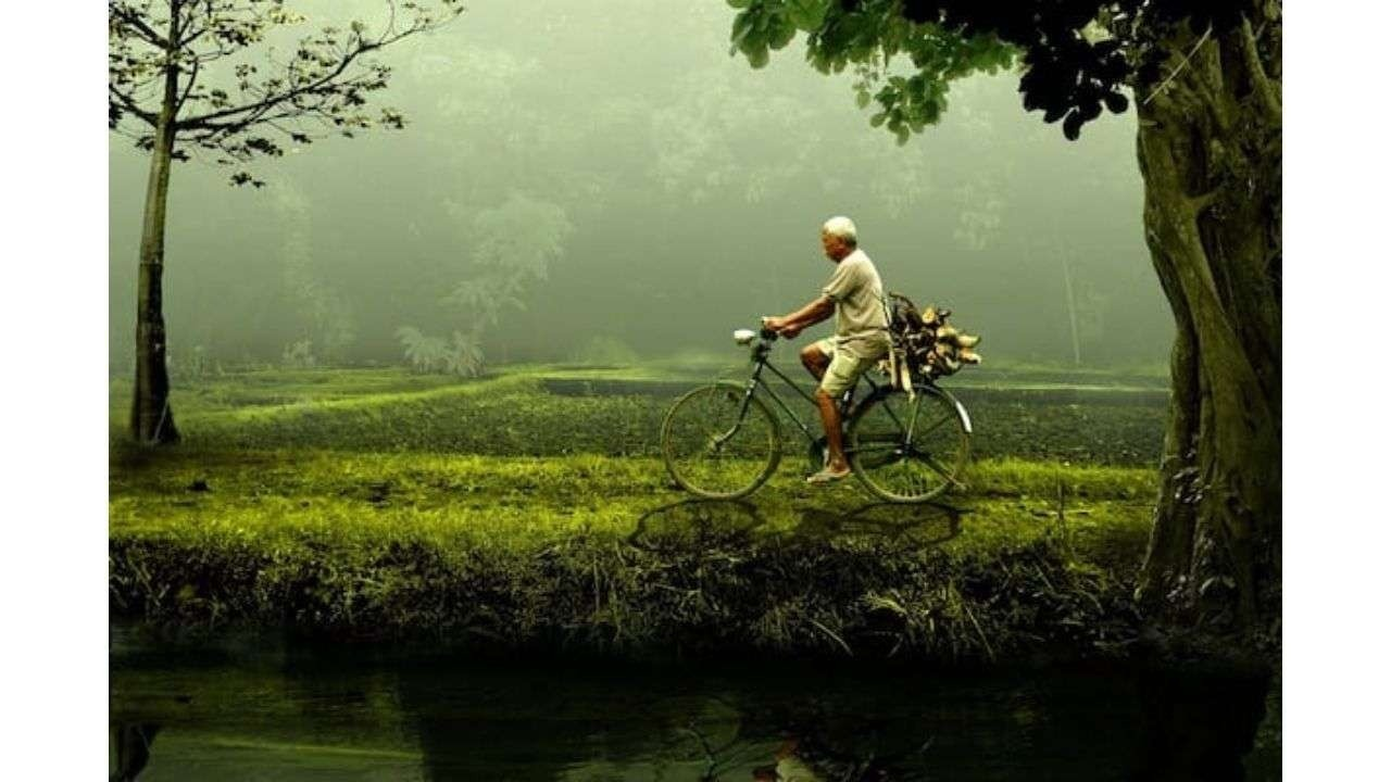 Person bicycling in nature