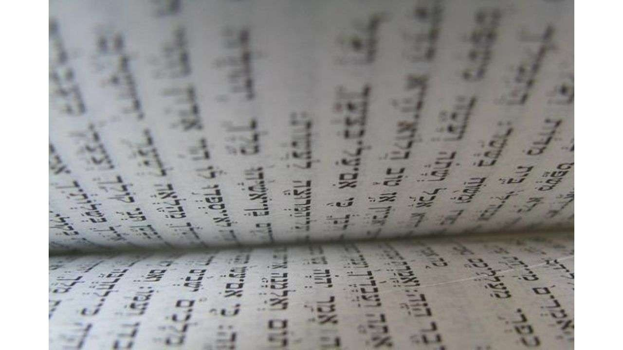 Torah photo