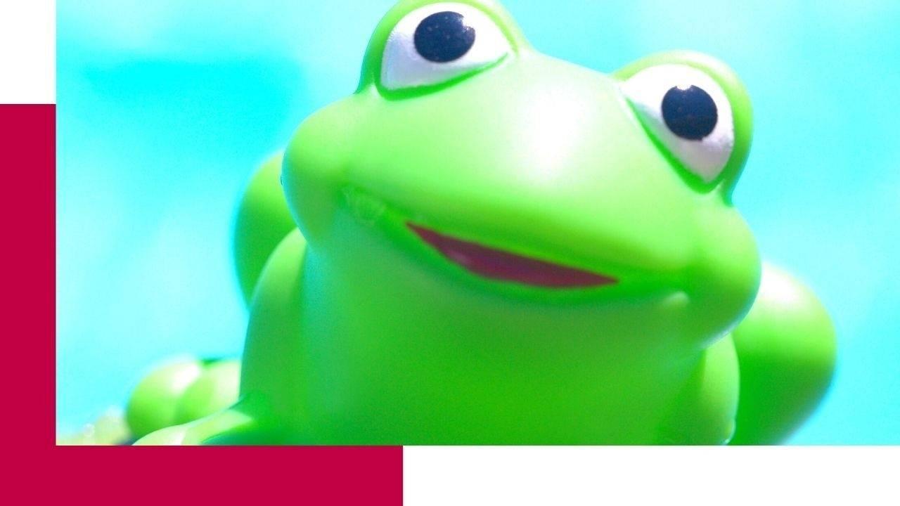 Eat that frog #AgileSelbstorganisation