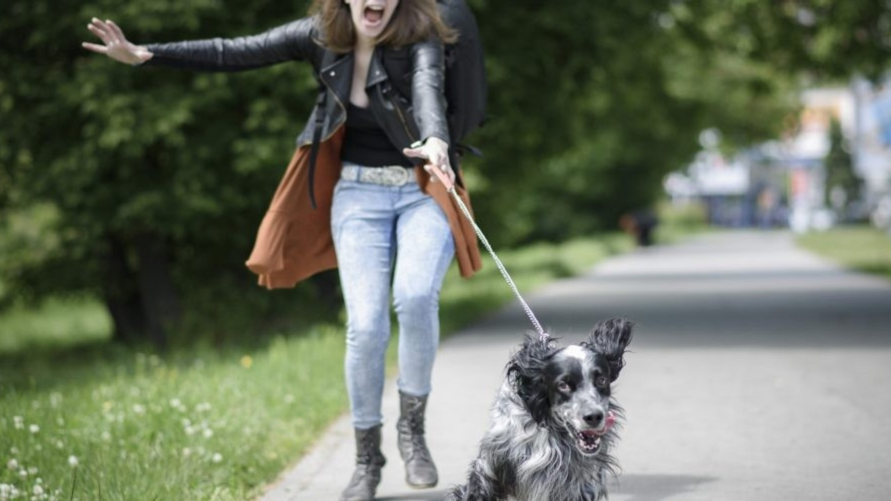 Woman being pulled on leash