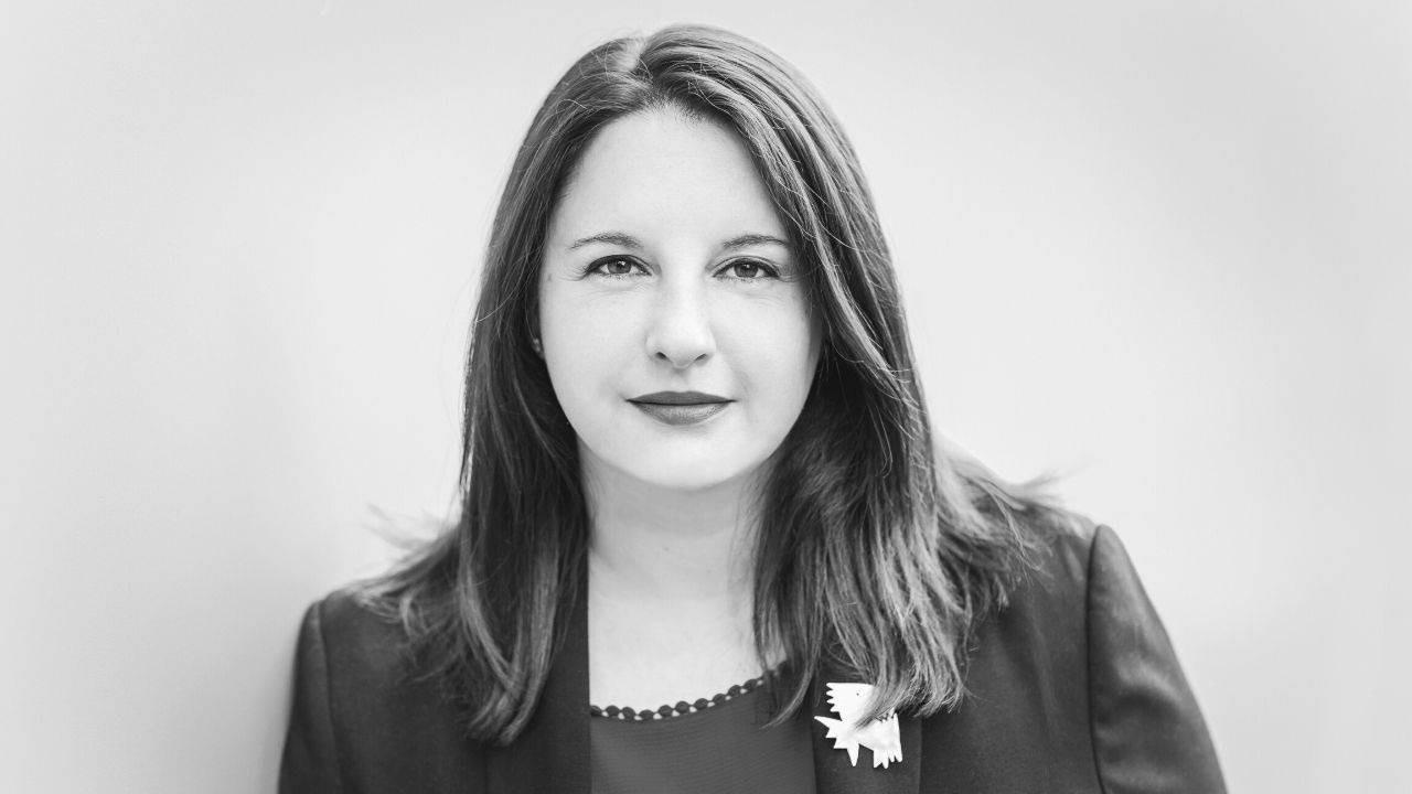 Cecilia Lipovsek, The Diplomatic Interpreter