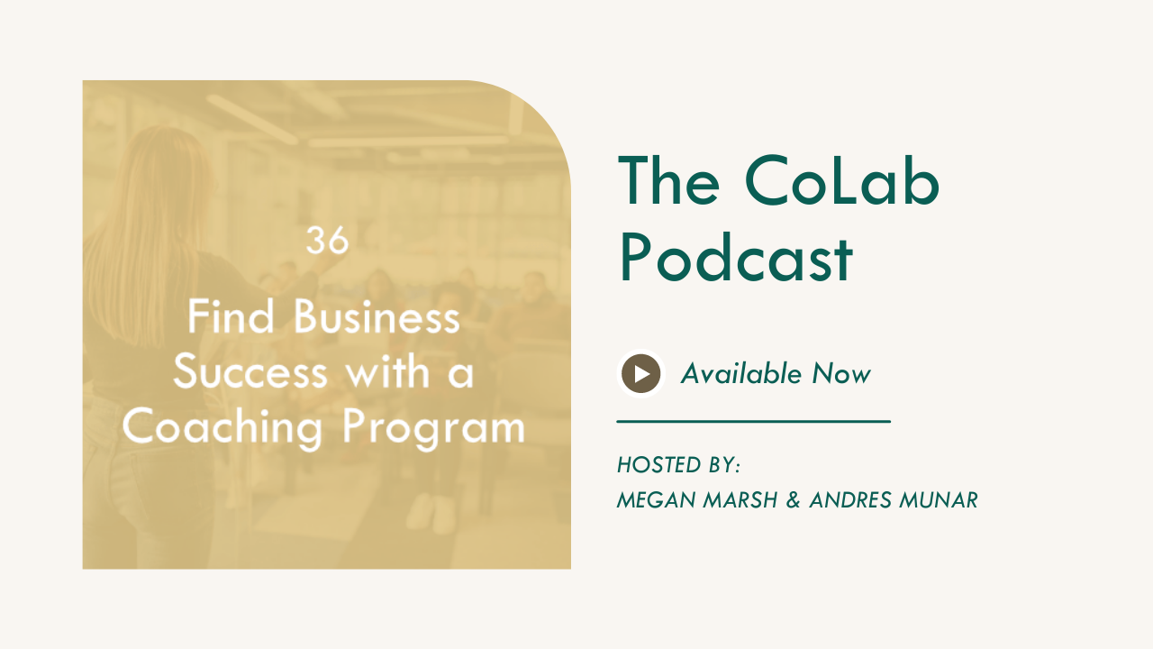 Coaching Programs And How To Find Business Success with Them