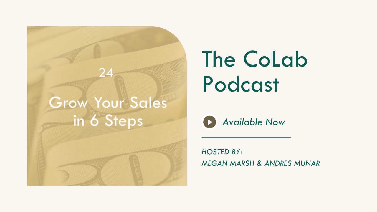 How To Grow Your Sales in 6 Steps with René Rodriguiz
