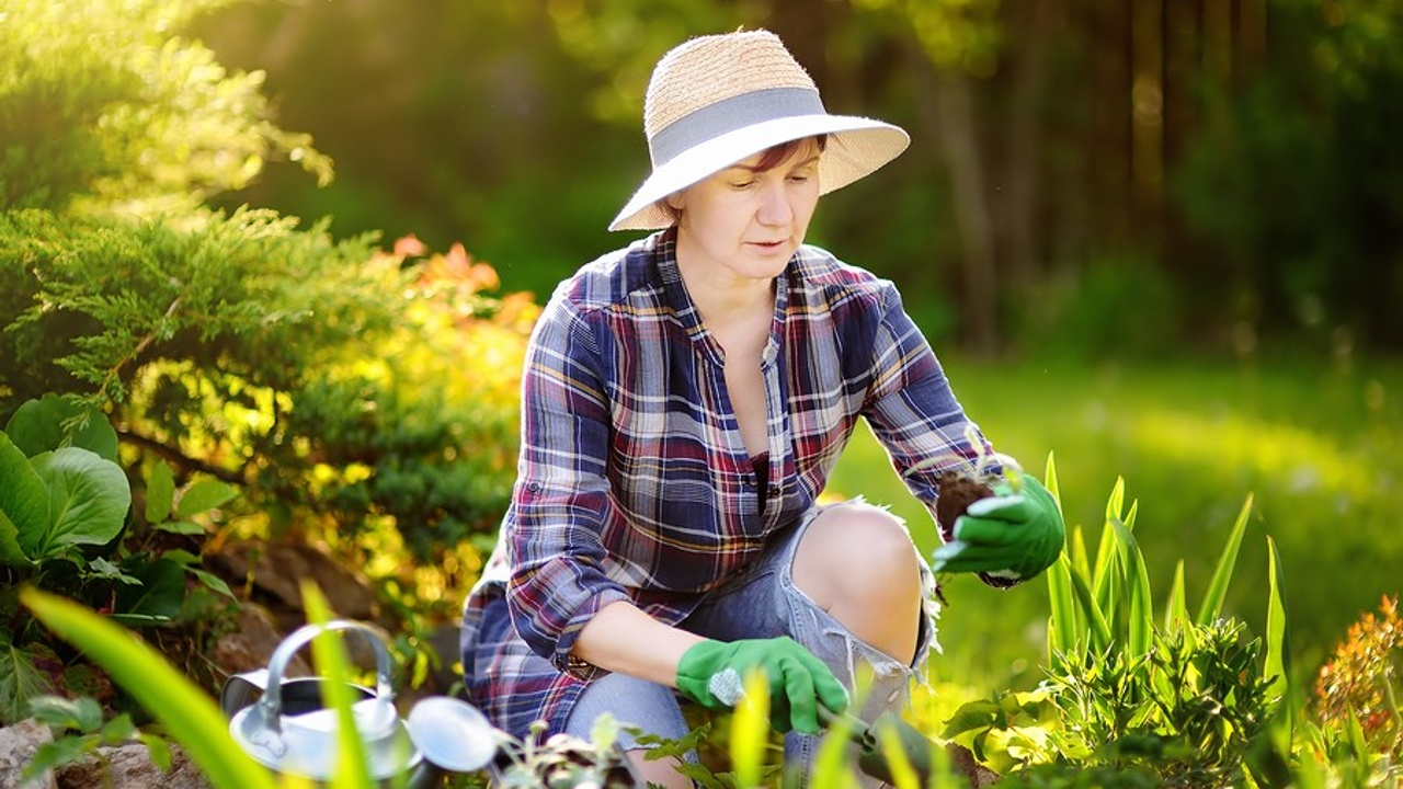 3 Exercises for Pain Free Gardening