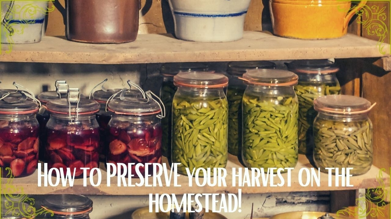 How to preserve your harvest on the homestead