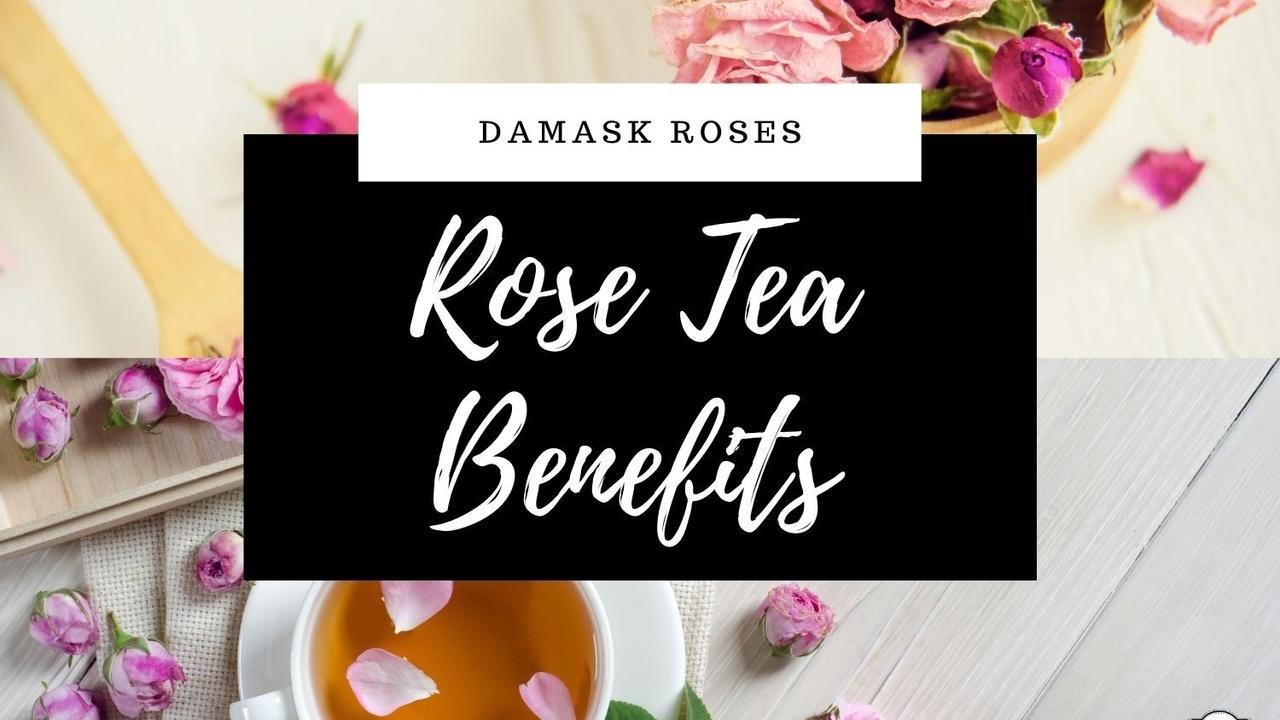 Rose Tea Benefits & Damask Roses