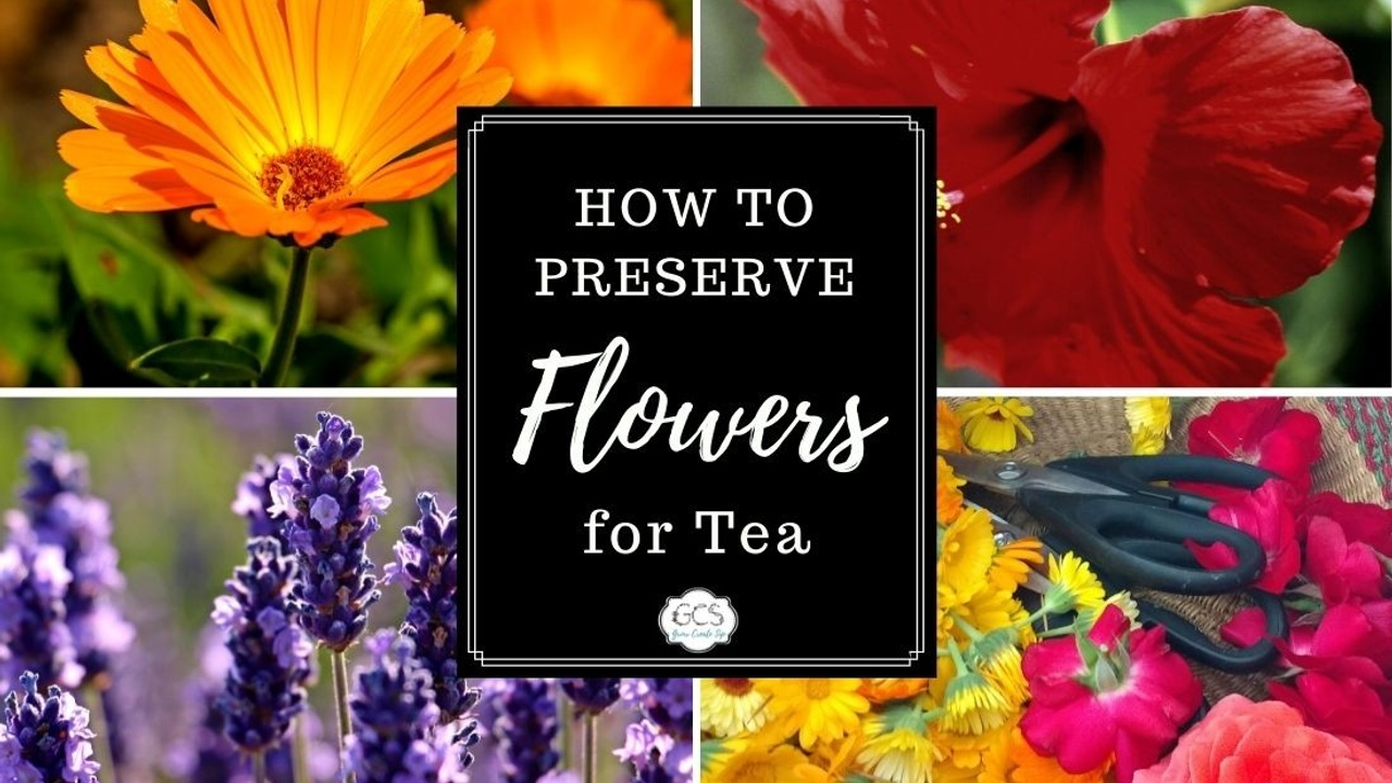 How to Preserve Flowers for Tea