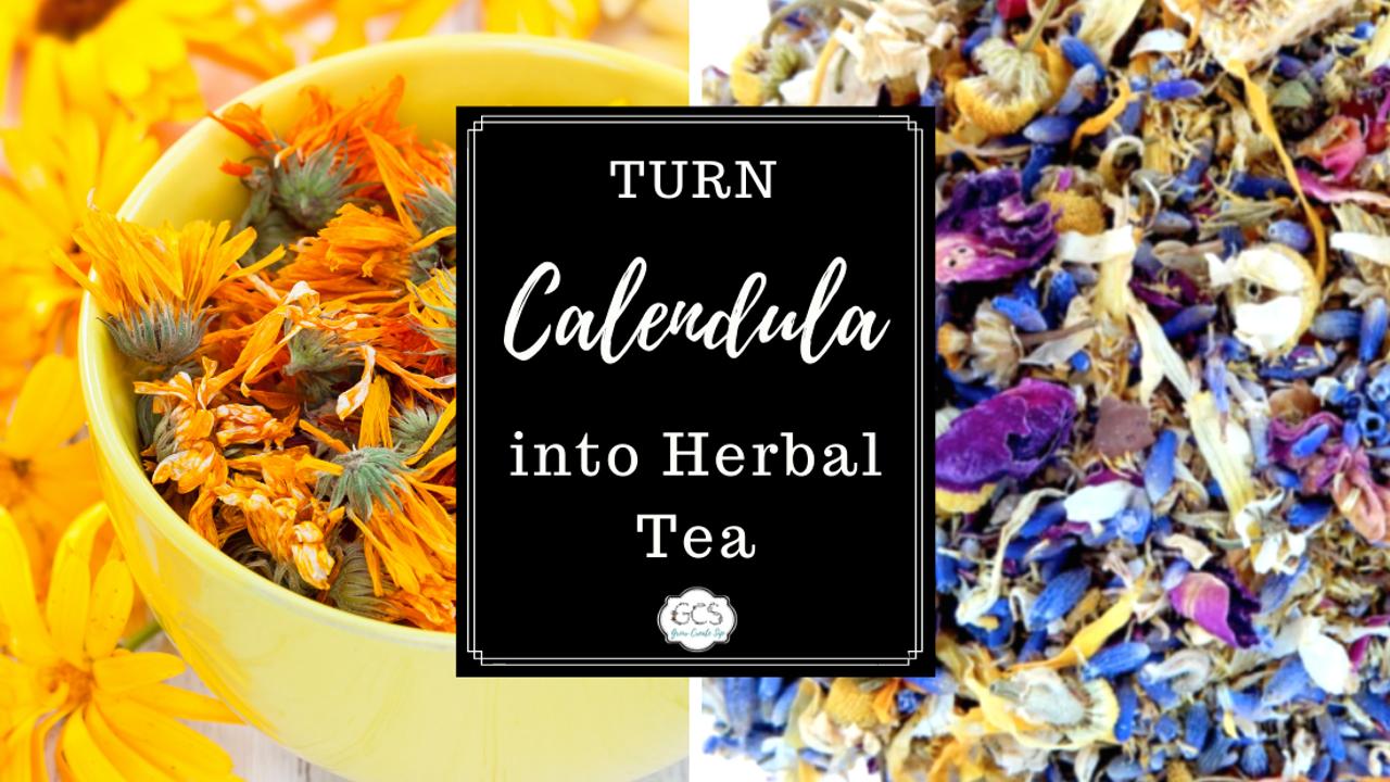calendula officinalis and calendula tea benefits