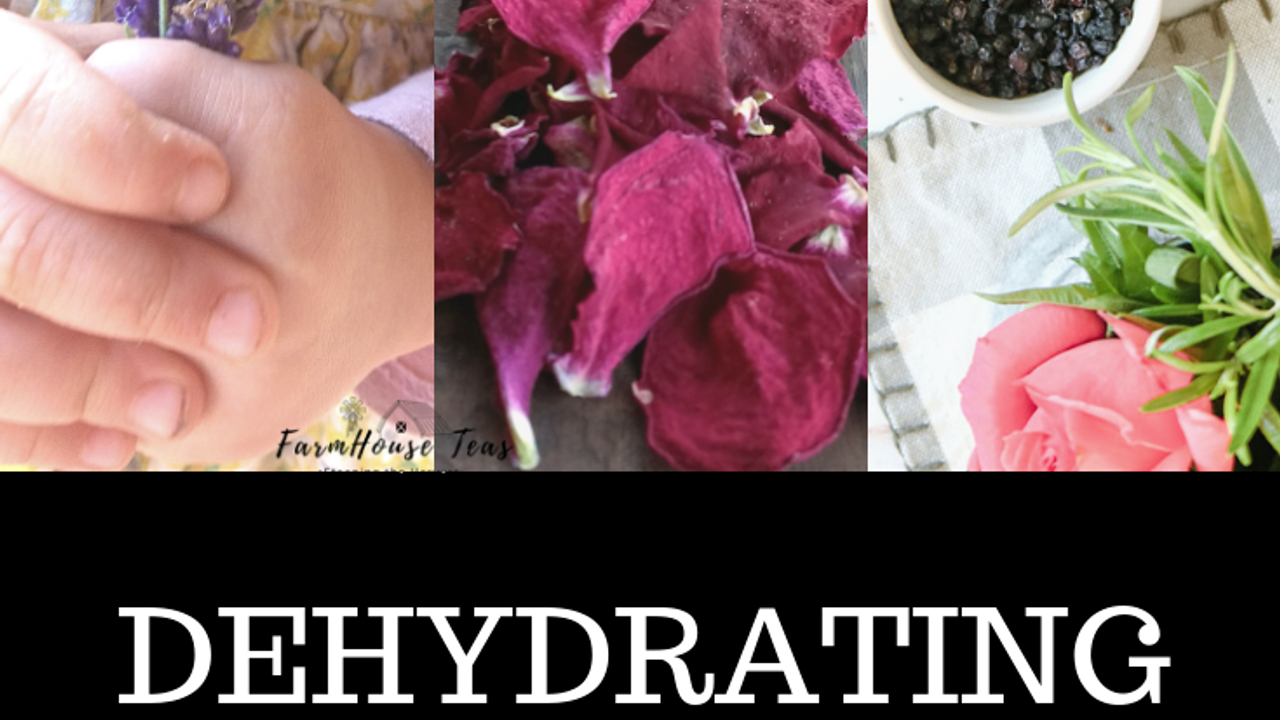 Dehydrating flowers, fruits & botanicals for herbal tea