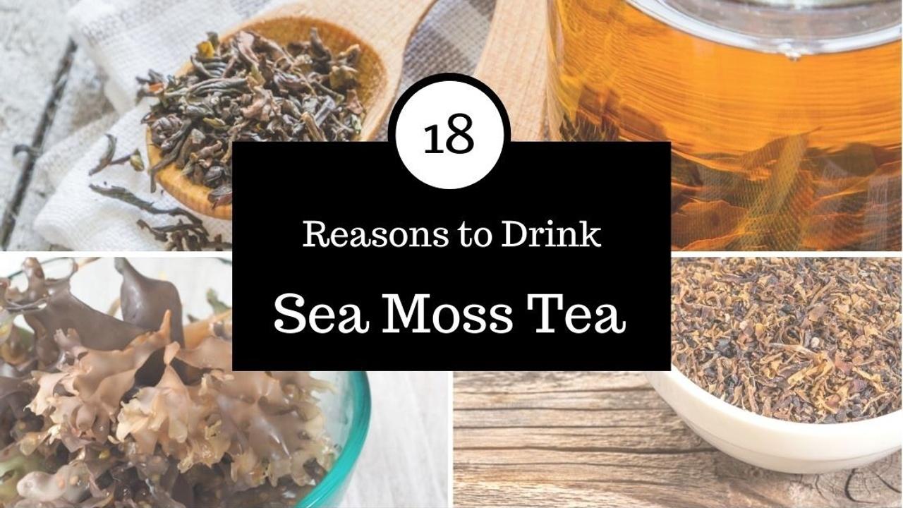 Irish Sea Moss Tea Recipe and Irish Sea Moss Benefits