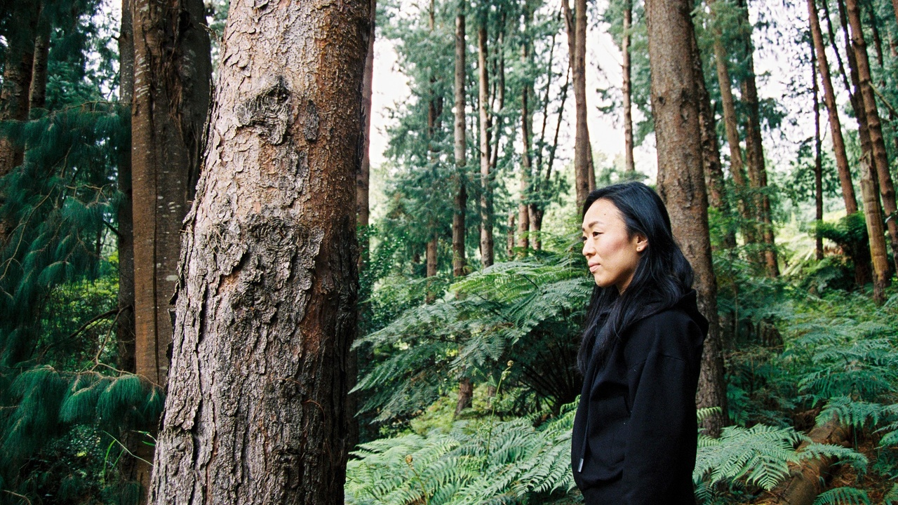 Image of an East Asian woman wearing a black hoodie, amongst several large trees and ferns, looking out into the distance.