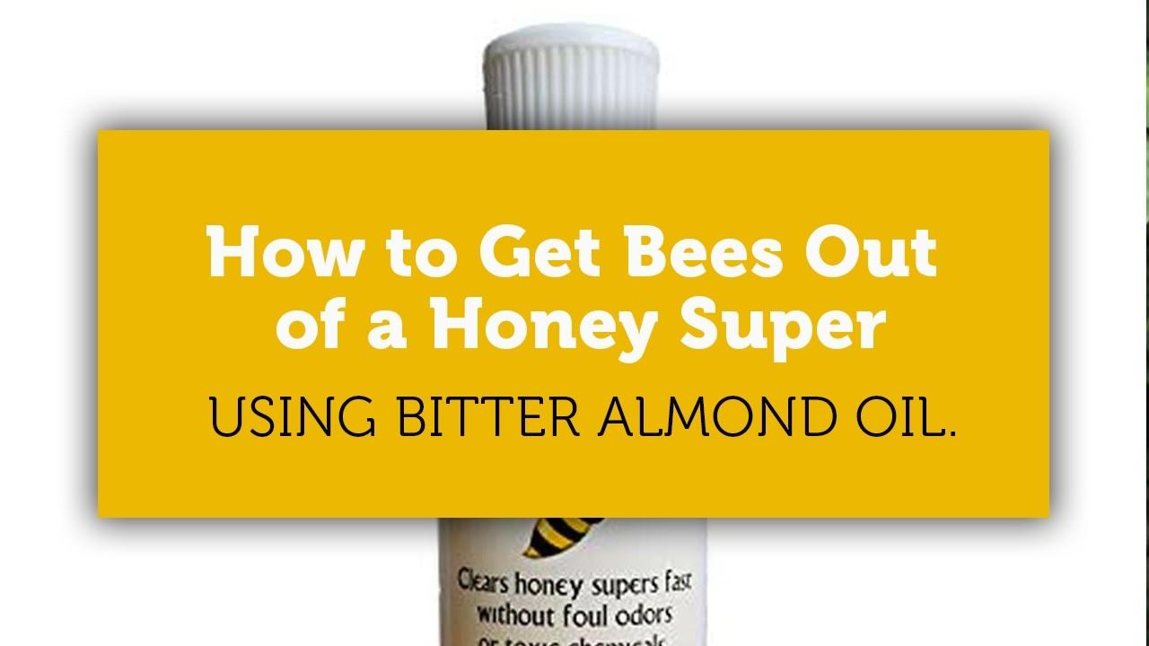 how to get bees out of a honey super fast blog cover image